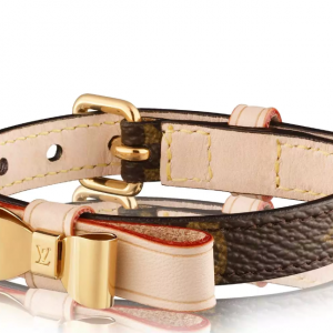BAXTER XSMALL DOG COLLAR