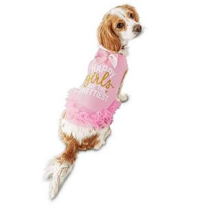 Bond & Co Happy Girls Are the Prettiest Dog Dress, Medium