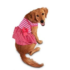 Bond & Co Stripes and Dots Pink Dog Dress, Large