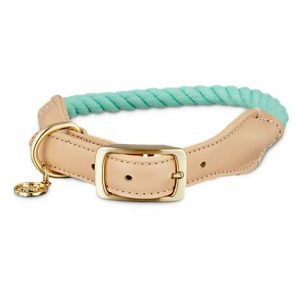 Bond & Co. Turquoise & Buff Rope Dog collar, For Neck Sizes 18-21, Large/Extra Large